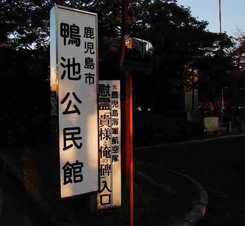 D20_0176.jpg